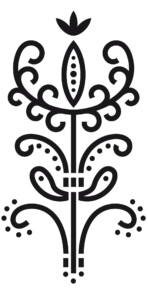Palmeta - Pokochaj Kaszuby
